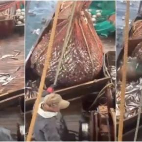 A rede de pesca não trouxe somente peixes do fundo do oceano