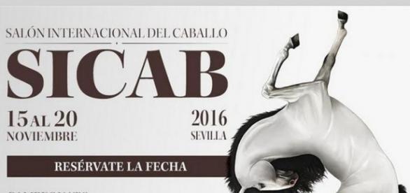 Sicab se celebrará del 15 al 20 de noviembre | Temas de cría ... - ecuestre.es