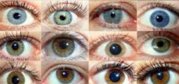 Cores de olhos existentes no mundo