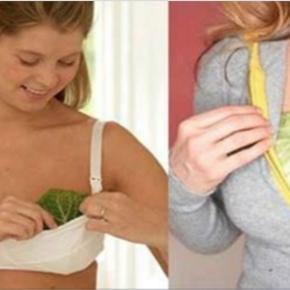 Mulheres colocando folha de repolho no seio