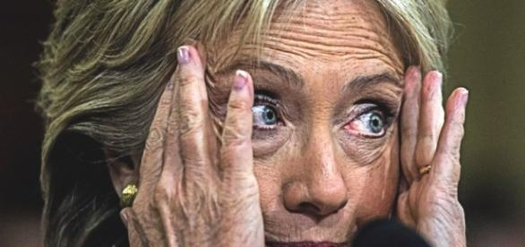 Hillary tends to her wounds via dog companionship, a good book, but no mention of Bill! Photo: Blasting News Library - americanpatriotdaily.com