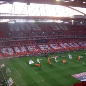 O SL Benfica joga no seu estádio frente ao Marítimo