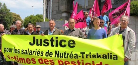 Reportage Vidéo] Triskalia - pesticides : Scandale sanitaire et ... - attac22.org