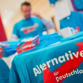 19. - 20.11.2016 AfD Landesparteitag in Kehl