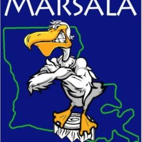 Rocky The Pelican is Logo for Charles Marsala for US Senate (courtsey of Charles Marsala)