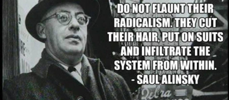 Beware the Useful Idiots