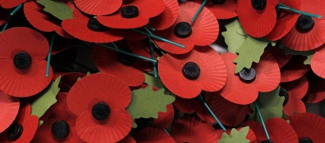 Remembrance Day - why do we wear poppies?
