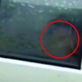 Um vídeo que circula na internet mostra uma atividade suspeita em um carro de autoescola