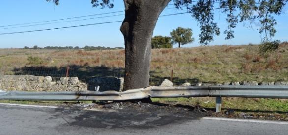 Acidente entre Nisa e Alpalhão, distrito de Portalegre, faz duas vítimas mortais.