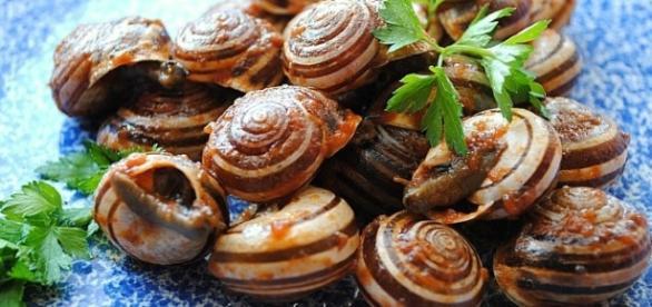Lumache alla Siciliana - Ricetta