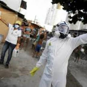 Wirus Zika w Ameryce Południowej