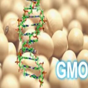 Zmiany genowe są nieodwracalne (YT scrn)