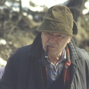 """""""MIś"""" fot. W. Krawczyński z polskiej Wikipedii"""
