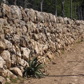 """Doble """"muro"""", para que por el redil, pase la migra"""