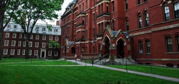 Universidade de Harvard abre inscrição para curso