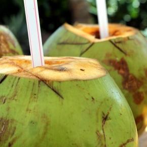 Woda kokosowa to płyn z wnętrza młodych kokosów