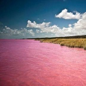 Lacul cu apă roșie - un mister descifrat