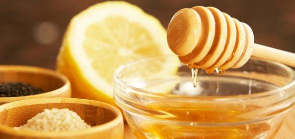 Miód i inne produkty pochodzenia pszczelego