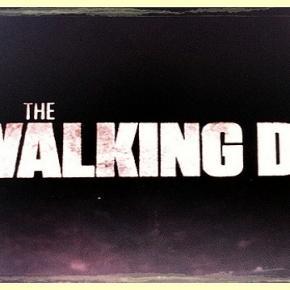 The Walking Dead/ Photo: Wapster (Flickr)