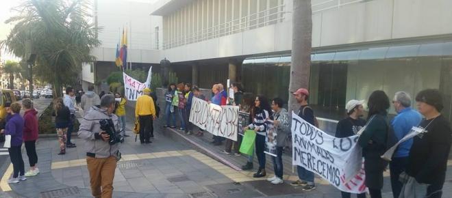 La matanza de cabras en Gran Canaria deja imágenes grotescas