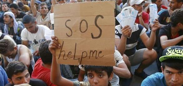 Refugiados chegaram a Portugal