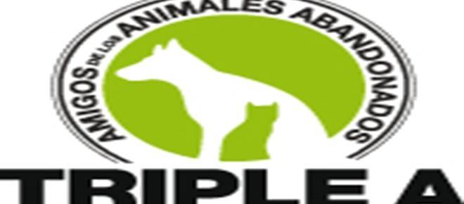 Cuatro trabajadores de la protectora de Marbella son detenidos por maltrato animal