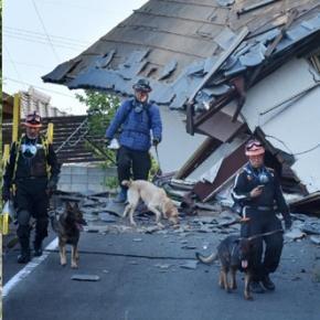 Se caută supraviețuitori după cutremurele catastrofale din Japonia - Aprilie 2016