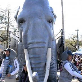 The Great Tuskers of AWE inspired Mardi Gras crowds in New Orleans.