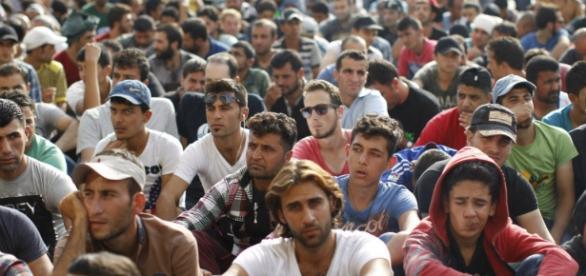 200 mln euro na walkę z przestępstwami seksulanymi imigrantów