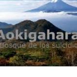 Aokigahara : El Bosque de los suicidios