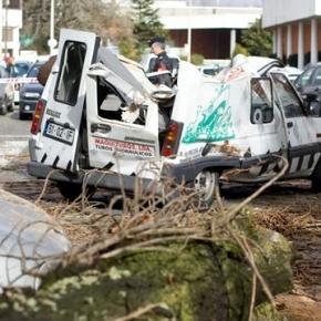 Queda da árvore esmagou a vítima de 71 anos