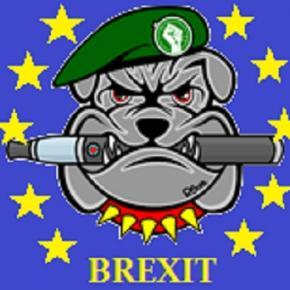 Brexit Symbolbild / @Daniel Schmahl