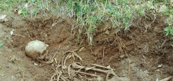 Clamorosa scoperta a Pellezzano: rinvenuti i resti di un soldato ...