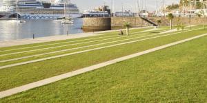 Madeira: Plataforma de Internacionalização