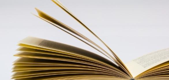 Livre - éducation - maxpixel - CC BY