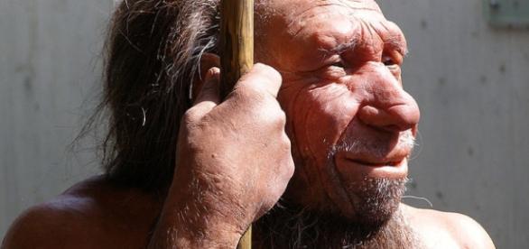 Belgian Neanderthals Were Butchering Their Dead   IFLScience - iflscience.com