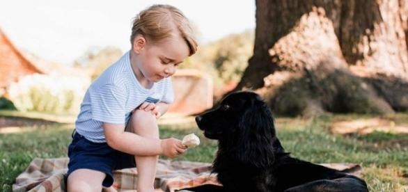 Prince George Is 3! See the Future King's Too-Cute New Birthday ... - yahoo.com
