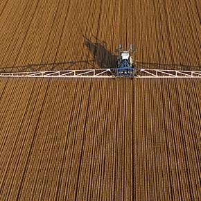 Pesticides: faut-il craindre nos fruits et légumes? - Le Temps - letemps.ch