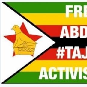 Zimbabwe activists / image screencap via ThisFlag Twitter