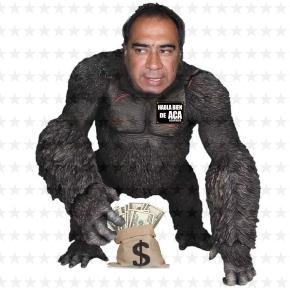 Lo de hoy son los gorilas, en zoológicos y en Acapulco.