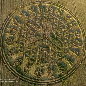 Un nouveau crop circle Angleterre Aout 2016 - copiright Gyro
