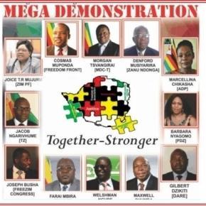 Coalition in Zimbabwe / Photo screencap via@Zimbabwe-pics Twitter