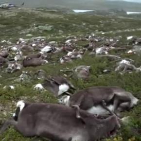Photo screen capture via Youtube.com