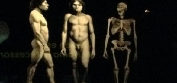 Los hombres que habitaron la parte norte de España hace miles de años