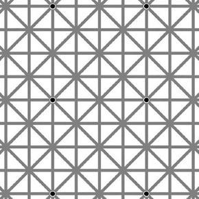 Douze points noirs sont répartis sur cette image. Combien en percevez-vous ?