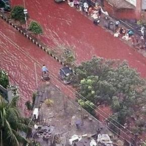 Ruas cobertas de sangue impressionam: visão sinistra
