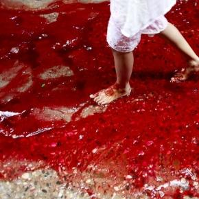 Heavy Rains and Eid Animal Sacrifices Create Rivers of Blood in ... - go.com