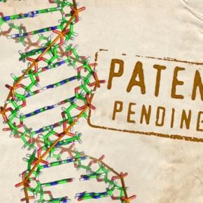 Patenting human genes should not be backlashed. http://www.salon.com/2011/08/02/gene_patents/