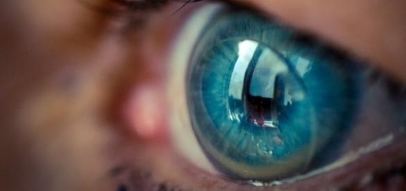 Contact lens photo from Wikipedia -- public domain