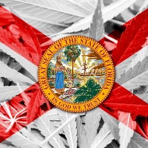 17 Interesting Marijuana Facts and Statistics (December 2017)